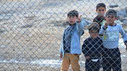 日本:移住労働者政策の改善と難民の受け入れ 必要