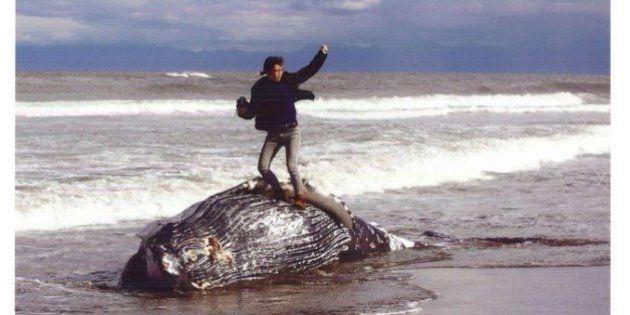 クジラの死骸の上でガッツポーズ、批判殺到で受賞を辞退 審査員の声は