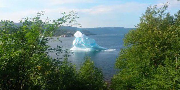カナダの「氷山通り」はスリリング 巨大な氷が崩壊して大波が......(動画)