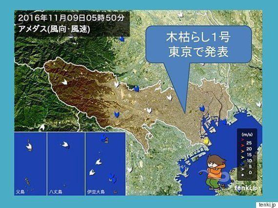 東京で木枯らし1号 12月上旬並みの寒さに