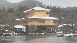 金閣寺が雪化粧、金と白のコントラストが世界遺産を彩る