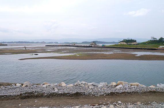 【東日本大震災から7年】親子一緒に自然体験