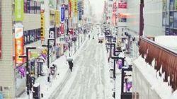 雪に弱い東京、新交通アプリ待望論 働き方の見直しも