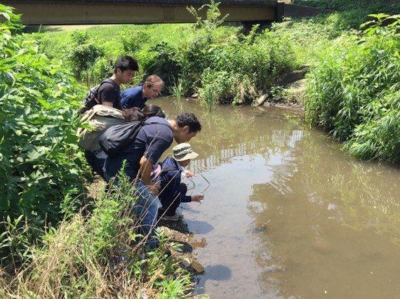 豊かな水辺環境を取り戻すために--問題を可視化し、アクションする人を応援するアプリ「AQMAP」