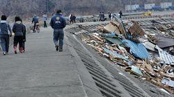 巨大防潮堤建設では生態系にも配慮を