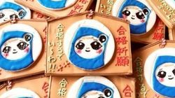 中小企業発・口コミで人気の合格祈願グッズ三選【受験】