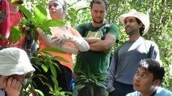 市民参加の環境調査プログラム 現地で研究者を手伝い、地球の今を体感
