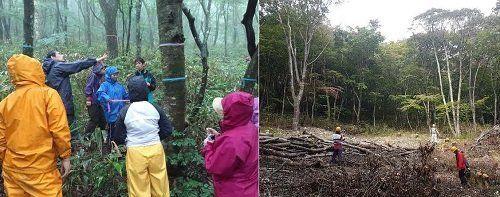 ●森林の循環を学ぶため、生徒たちは伐採前(左)と伐採後(右)に森を訪ねた