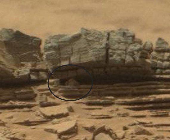 何てこった、火星にカニがいるぞ!(画像)