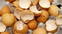 【欧州タマゴ問題】フィプロニル含有可能性のある製品、フランスのスーパーで回収始まる