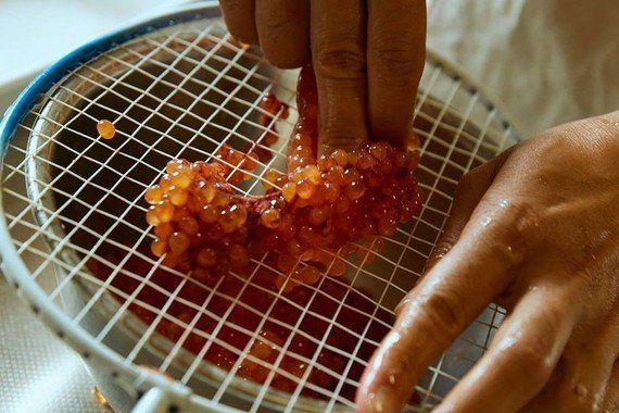 24時間かける「究極のイクラ丼」~キラキラ光る変幻自在の宝石~