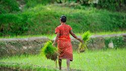 生理中の女性は不浄----ネパールの慣習「チャウパディ」罰則化の次に求められること