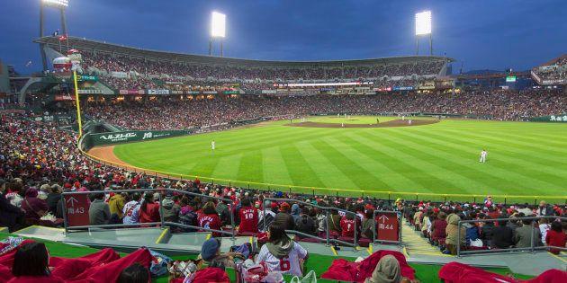「野球クジ」でスポーツ振興より「野球界」自ら再生努力せよ--小林信也
