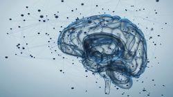 脳ネットワークのコンピューター化で音声認識