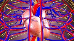 渦巻きが心臓の危険な乱れの原因となる
