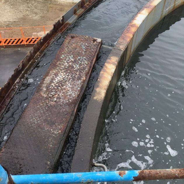 豊洲新市場(地下たまり水)と築地市場(濾過海水)、独自調査では双方から環境基準値を超える汚染物質が検出も...?