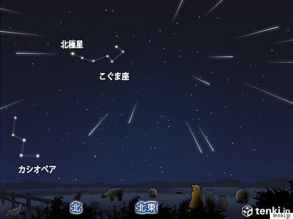 新年初の天体ショーは「しぶんぎ座流星群」