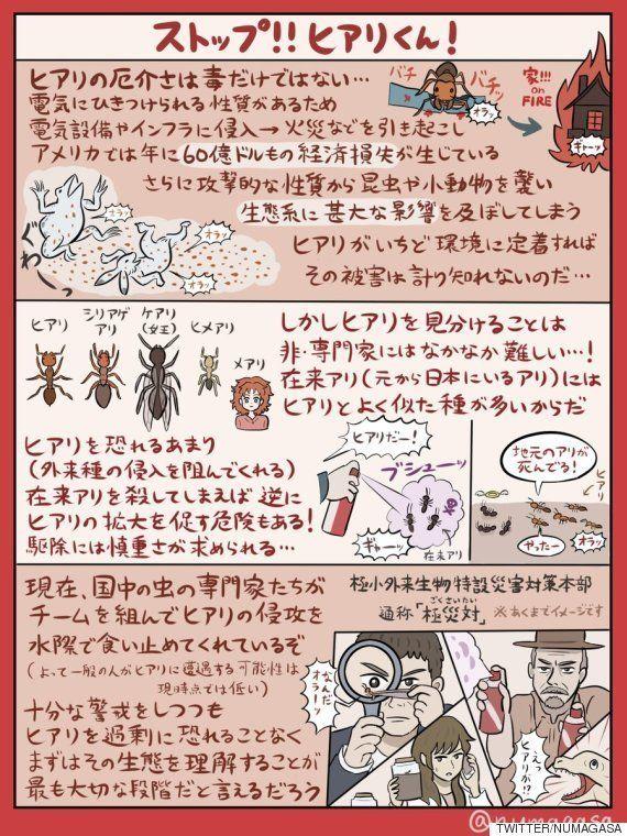 ヒアリの図解、分かりやすいと大反響