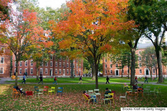 「大丈夫じゃなくても大丈夫」カウンセラーの言葉が勇気をくれた。ハーバード大学での心のケア