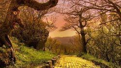 「オズの魔法使い」のテーマパークへようこそ 不思議で美しい廃墟の世界