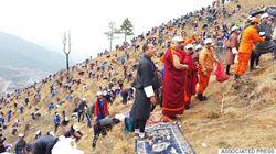 ブータンの国民が、王子誕生をお祝い。みんなで10万8000本の木を植樹したよ