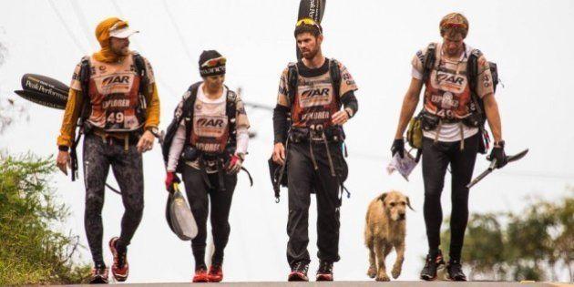 ジャングルのレースに最後までついてきた野良犬、引き取られる