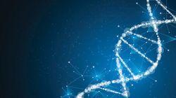 DNAミスマッチの認識