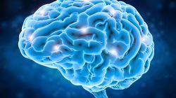 免疫記憶が脳疾患を変化させる