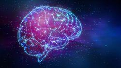 ため息中枢ニューロンの発見