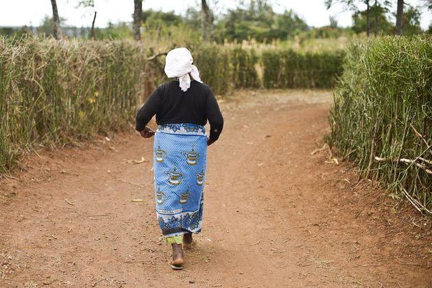 ケニア:レイプ被害者の苦しみ いまだ終わらず
