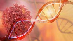 がん細胞におけるEMTと転移