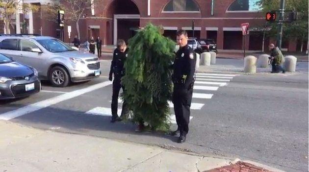 アメリカ 交差点で木に仮装して立っていた男が逮捕される(動画)