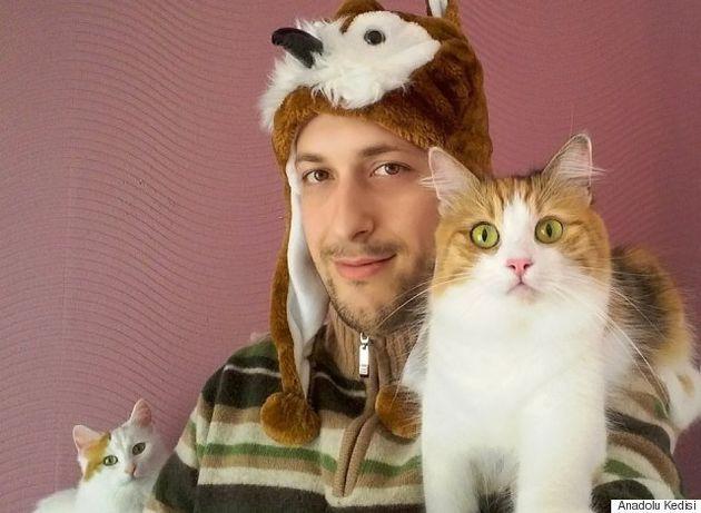「ずっと街を見守ってやるニャン」トルコの名物猫、亡くなった後も同じポーズで佇む