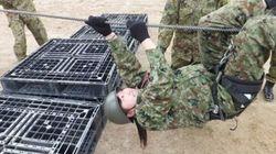 女性限定の自衛隊1日見学会、防衛省が参加者を募集