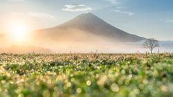 5万以上の語彙から形成される日本人の感性は世界一か?
