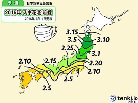 東京都心で花粉の飛散開始 今年の花粉は多い?