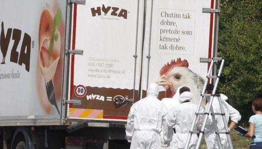 トラックの荷台に多数の遺体 オーストリア、難民・移民か