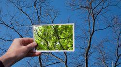 脳の働きには季節差があった。夏は集中力、秋は記憶力が活発に(研究結果)
