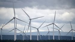 再生可能エネルギーは、石油とそれほど競合していない