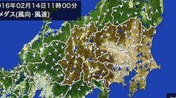 関東地方で春一番が吹きました