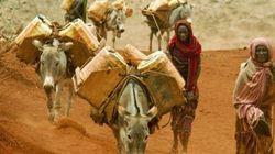 「砂漠化について考える。日常を非日常にしないために。」 ~6月17日は、砂漠化および干ばつと闘う国際デーです~