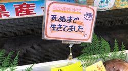 「死ぬまで生きてました」竹野鮮魚が、強烈なポップの狙いを明かした(UPDATE)
