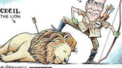 ジンバブエのライオン「セシル」射殺、漫画家らからも批判の声