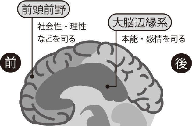 出所)樋口進『スマホゲーム依存症』(内外出版社、2017)