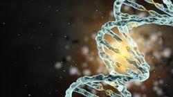 高精度の遺伝子編集、ネイチャーで報告