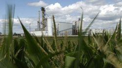 エタノール燃料の排気ガスは予想以上に有害?