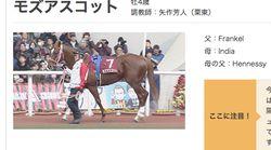 モズアスコット、平成最後の「安田記念」で勝利 ルメール騎手「ごっつぁんです!」と喜びの声