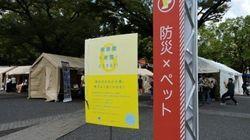 渋谷防災フェスで学んだ、日々の備え