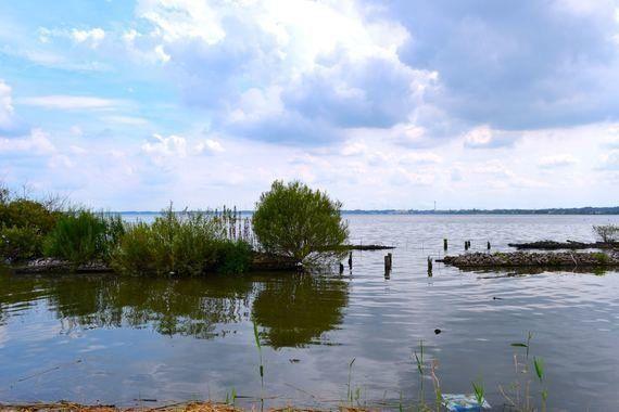 8000人が参加した「世界湖沼会議市民の会」をもう一度。