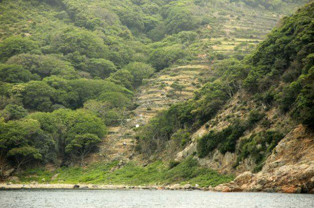 野崎島の舟森集落跡。野崎島は神道の聖地で、神官を中心とする氏子たちが暮らしていた。そのため、島に渡った潜伏キリシタンたちは、島の未開の地に新たに舟森集落を築いた。同集落跡は、世界文化遺産に登録される見通しとなった「長崎と天草地方の潜伏キリシタン関連遺産」(長崎、熊本)の構成資産のひとつ、「野崎島の集落跡」の一部=31日、長崎県小値賀町